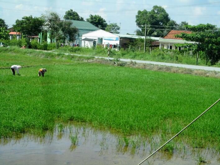 Vietnamroad06